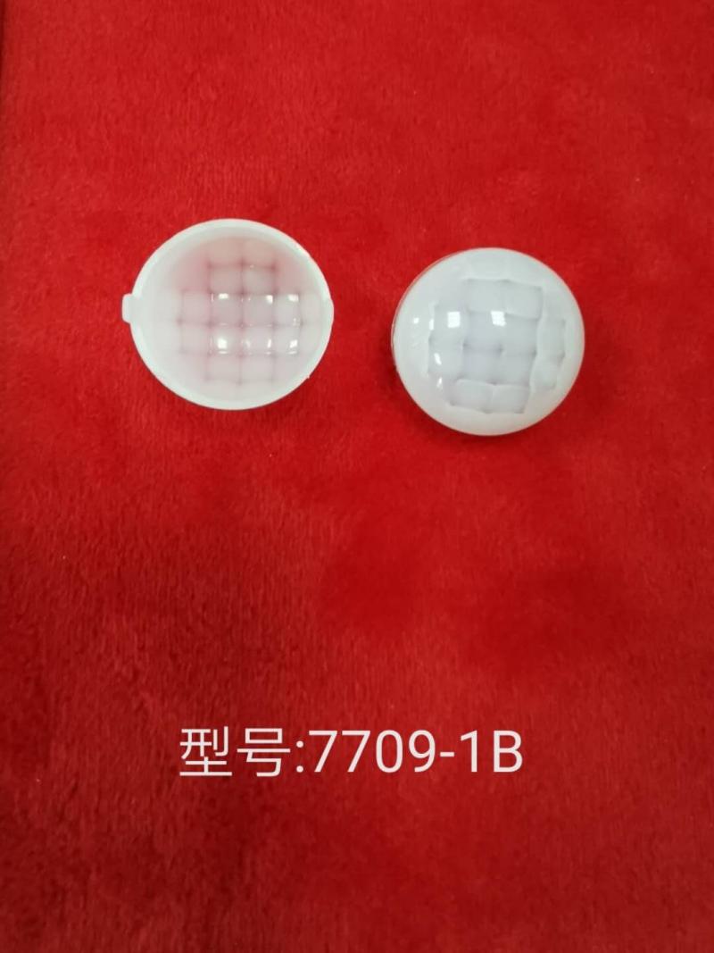 菲尼尔透镜 7709-1B